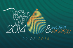 The World Water Day 2014, which will focus on the water-energy nexus, is one the main events around water planned for 2014